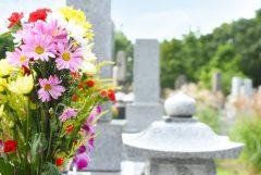 お墓の改葬を行う時の手順と必要な費用