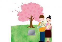 樹木葬の特徴や費用の内訳について